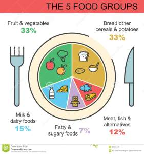 Les 5 grands groupes d'aliments.